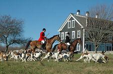 Stampa incorniciata-britannica caccia alla volpe TRUPPA (PICTURE POSTER Beagle Cani Caccia Art)