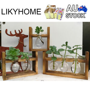 AU Wooden Stand Hanging Glass Container Hydroponics Plant Vase Pot Gift Wrapping