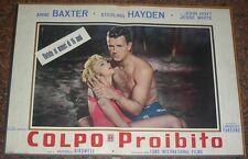 FOTOBUSTA 1, COLPO PROIBITO (THE COME ON), ANNE BAXTER, STERLING HAYDEN, DRAMMA