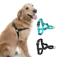 No Pull Dog Pet Walking Harness Step in Walk Safety Strap D Ring Buckle Nylon