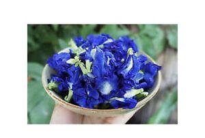 PREMIUM Blue Dried Butterfly Pea Flower Tea Organic 100g Pure No Caffeine Thai