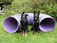 "Tough Vinyl 10' Dog Agility Equipment Tunnel 4"" ring spacing"