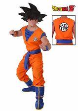 Dragon Ball Z GoKu Costume