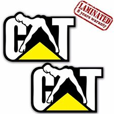 2 VINYL STICKERS CATERPILLAR CAT NAUGHTY CHICK AUTO MOTO CAR TRUCK TUNING B 288