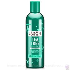 Jason Bodycare Organic Tea Tree Oil Therapy Shampoo 517ml
