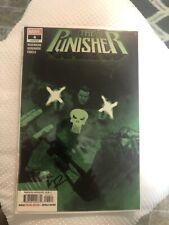 the punisher Marvel #4 Signed