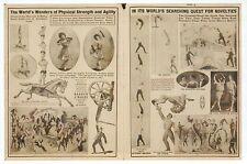 Barnum & Bailey Circus Program Poster Image, Horse etc., P.T. -- Modern Postcard