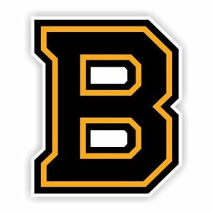 "Boston Bruins ""B"" Decal / Sticker Die cut"