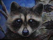 Raccoon animal wildlife Landscape Birch tree painting