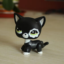 LPS Toys #2249 Littlest Pet Shop Short Hair Cat Black White flower eyes Kitty