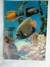 Vintage Japanese 3D Lenticular Postcard Marine Fish
