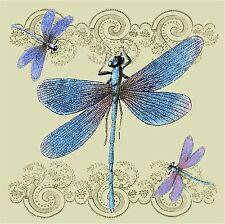 DRAGONFLY DRAGONFLIES  IMAGE k1 COASTERS SET OF 4 RUBBER BACKED