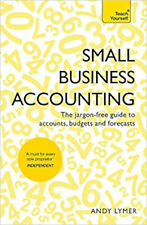 Small Business Accounting: The jargon-free guide to accounts, budgets and foreca