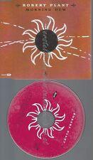 CD--ROBERT PLANT--MORNING DEW