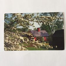 Apple Blossom Time Tree Red Cabin Landscape Unposted Postcard