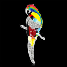 Animal Bird Pin and Brooch Oil Painting Rhodium Plated Parrot