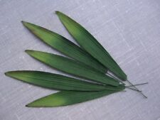 50 Mulberry Paper LEAVES 10cm GREEN MPL12C Scrapbook Card Embellishment