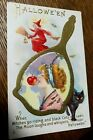 Halloween Beautiful Woman Bobbing For Apples Black Cat Embossed 248 E Postcard