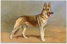 CHIEN. BERGER ALLEMAND. GERMAN SHEPHERD  DOG. ARTIST SIGNED. I. RIVST