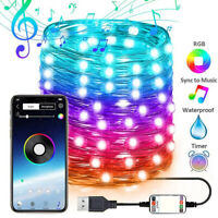 Xmas Christmas Tree Decoration Lights Custom LED String Light App Remote Control