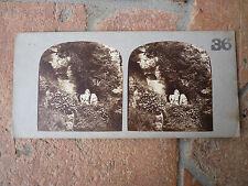 Vues lot 2 cartes vues  stereoscope CHATEAU  VERSAILLE PARC 1863 France 19ème S