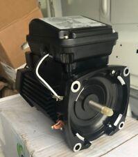 Pentair TEFC 354824S Pool pump motor