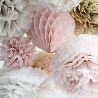 Dusty blush and champagne tissue paper pom poms & honeycomb party set