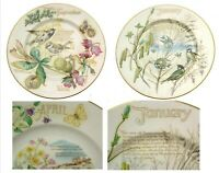 Caverswall The Country Diary Of An Edwardian Lady Plates CHOOSE ONE