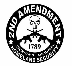 "2nd Amendment Gun Vinyl Heat T-Shirt Transfer HTV Vinyl 10"" x 10"""
