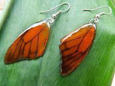REAL Monarch Butterfly Wings Earrings Jewelry 925 sterling Silver Hook RED/Orang
