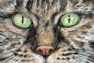ACEO ORIGINAL Tabby CAt Green eyes 21-0039  Painting cat s-lana
