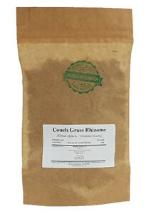 Couch Grass Rhizome - Elymus Repens L # Herba Organica # common couch, twitch