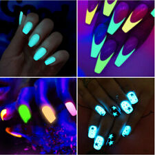 12X Luminous Glitter Nail Powder Dust Chrome Pigment Glow in Dark Halloween Tips