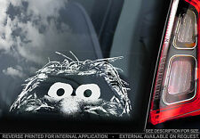 Animal - Sesame Street Car Sticker - Muppets Peeping Peeper Window Sign Art