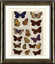 Antique Book page Art Print - Butterflies 6 Upcyled Vintage Dictionary Wall Art