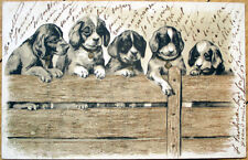 1902 Dog Postcard: Five Puppies on Fence w/Gold Designs - Color Litho