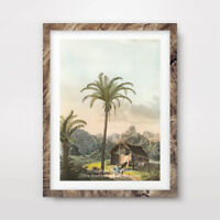 TROPICAL LANDSCAPE ILLUSTRATION ART PRINT Poster Florida Wall Decor A4 A3 A2