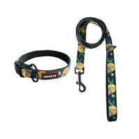 Premium Dog Collar Leash Set for Puppy Small Medium Dogs