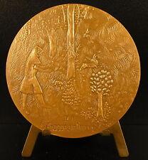 Médaille Avignon Palais des papes La chasse au furet sc Luthringer medal