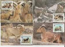 WWF 4 x Card - Tchad 1988 - Bok / Barbary Sheep (135)