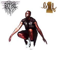 LE1F - Riot Boi LP + Download Card 2015 BRAND NEW VINYL – TRLP 046