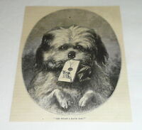 1878 magazine engraving ~ PUPPY DELIVERING A LETTER