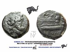 Roman Republic (Semis,Elephant's) testa di Elefante