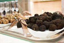- Fresh black truffles italian.Precious T.Uncinatum 230g. 8,1oz.-Mushrooms-.