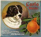 Pomona Carlo Bernese Mountain Dog Orange Citrus Fruit Crate Label Art Print