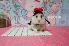 Hamster Gerbil Mouse Girl Braiding hair Hat Cap Costume Pet Gift