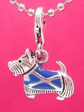 Adorable Scottie Terrier Dog with Scottish Flag Coat  Clip On Charm