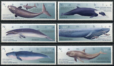 Namibia 2019 MNH Whales Pygmy Sperm Blue Whale 6v Set Marine Animals Stamps