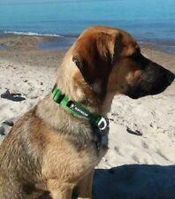 RUFFWEAR PET DOG COLLAR CHAIN REACTION REFLECTIVE GEAR LARGE. NEW