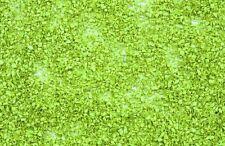 Noch 07152 Laub hellgrün 100 g